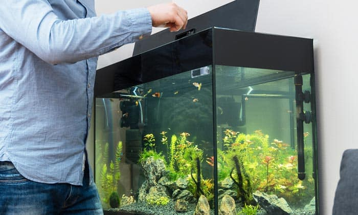 best aquarium bacterias starter