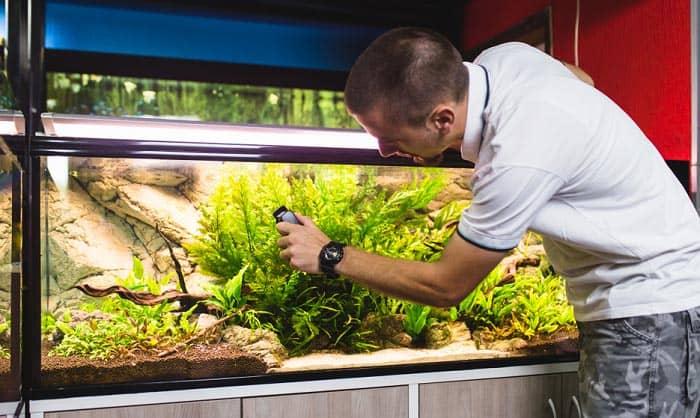 best-aquarium-heater-controller