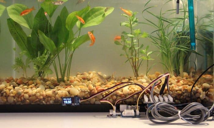 best-aquarium-monitoring-system-reviews