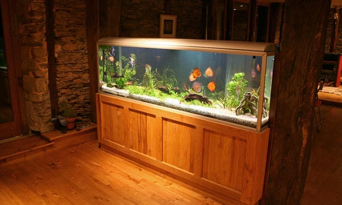 best aquarium stand