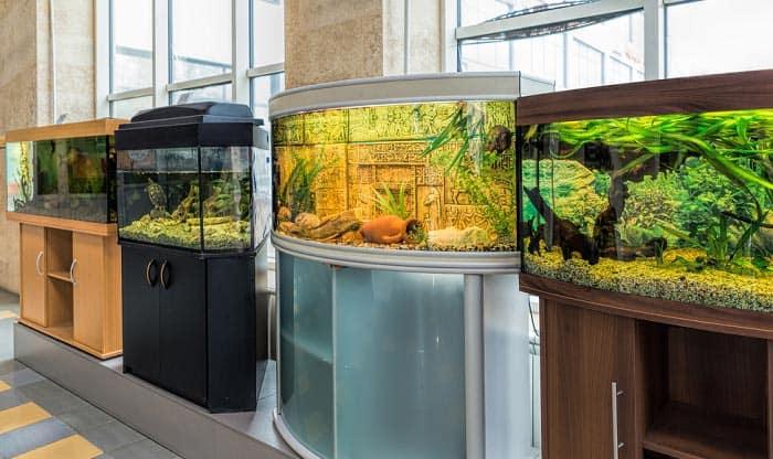 modern-fish-tank-stand