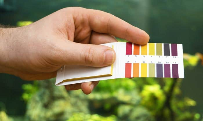 nitrate-and-phosphate-test-kit