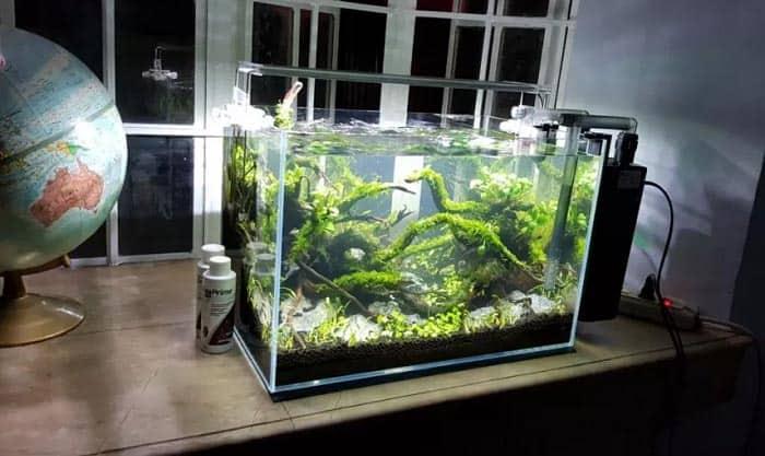 aquarium-filter-for-10-gallon-tank