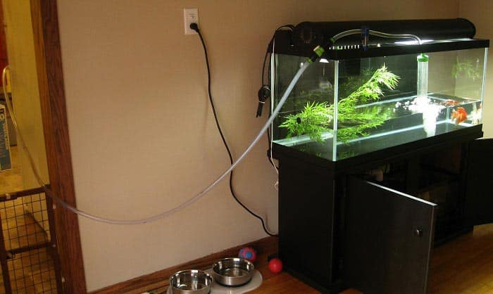 best aquarium water changers
