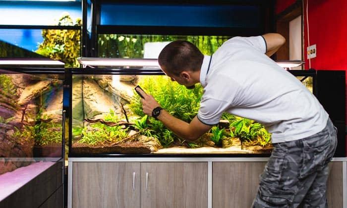 best-aquarium-glass-cleaner