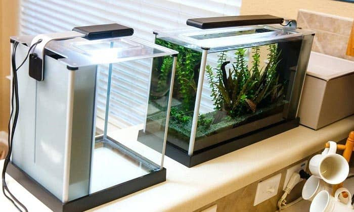 best aquarium light timer