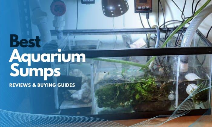 best aquarium sump