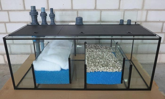 best-reef-sumps