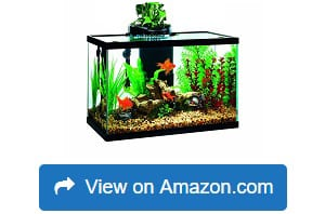 Elive-Aqua-Duo-20-Gallon-LED-Kit-Aquarium-Starter-Kits