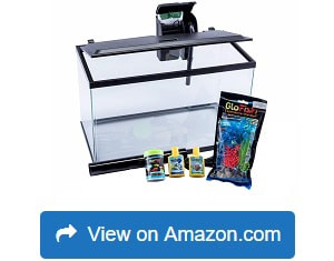GloFish-Aquarium-Kit-Fish-Tank-with-LED-Lighting-and-Filtration