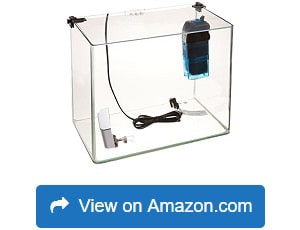 Penn-Plax-Curved-Corner-Glass-Aquarium-Kit