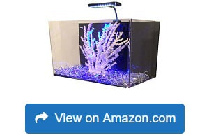 R&J-Enterprises-Fusion-Acrylic-All-in-One-Aquarium-Kit
