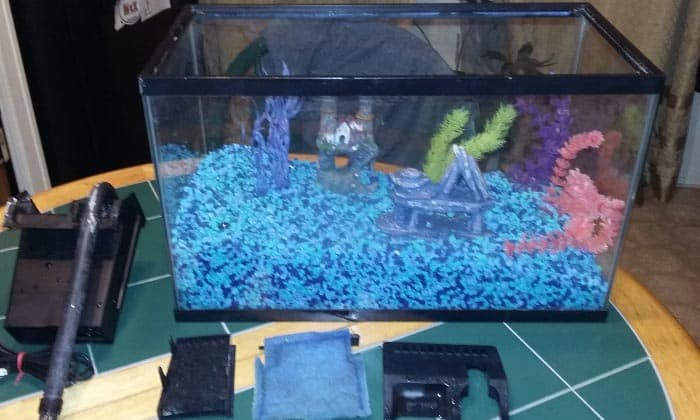 best-10-gallon-aquarium