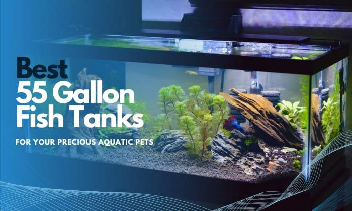 best 55 gallon fish tank