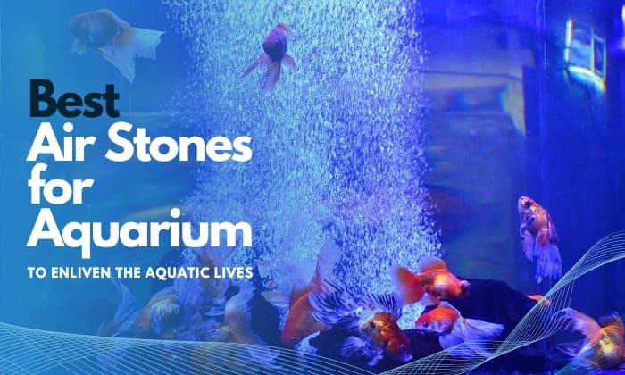 best air stone for aquarium