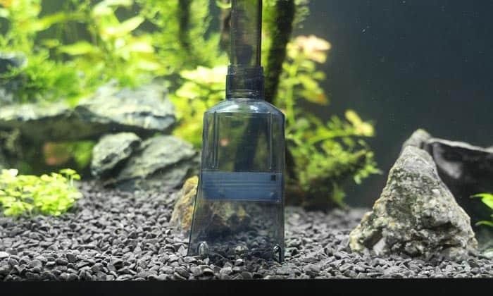 best-aquarium-gravel-cleaner