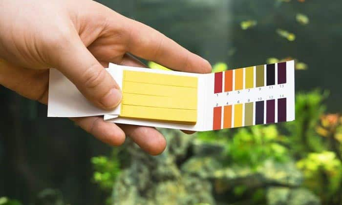 best aquarium water test kit