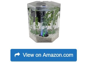 Tetra-29040-Hexagon-Aquarium-Kit