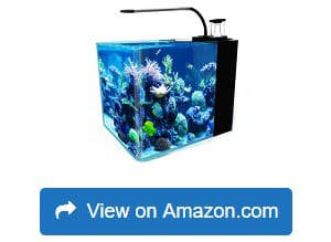 10 Best Nano Reef Tanks Reviewed And
