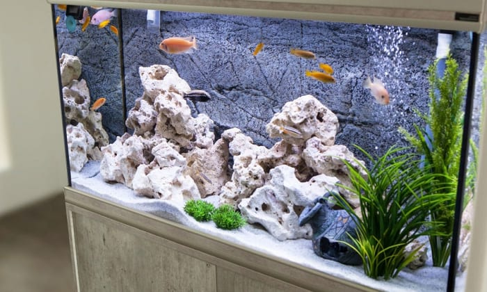 pool-filter-sand-in-aquarium